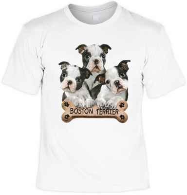 T-Shirt: 3 Boston Terrier Welpen mit Knochen